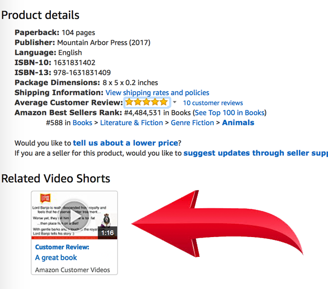 LitPick Book Brief video placement on Amazon.com book listing.