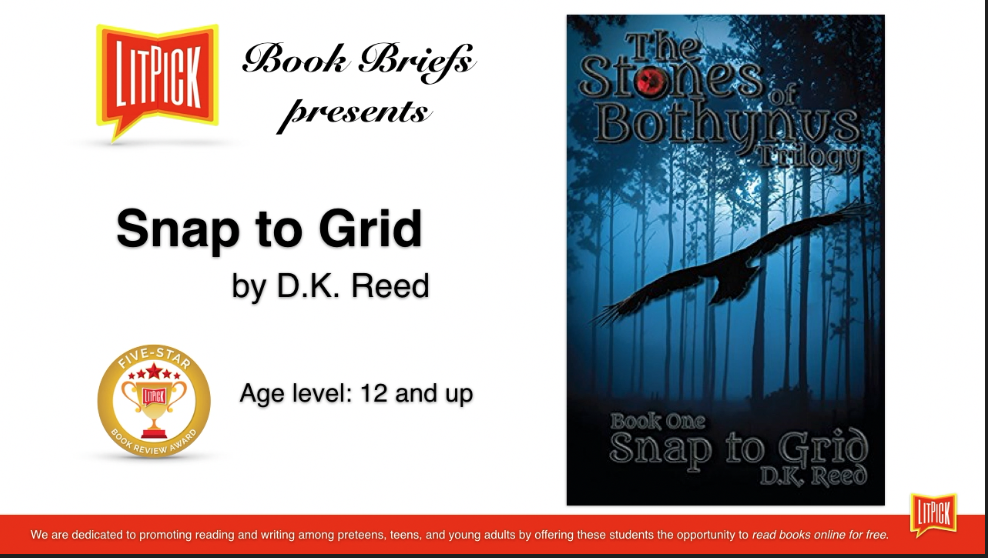 Snap to Grid by D. K. Reed LitPick Student Book Reviews