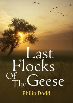 Last Flocks of the Geese